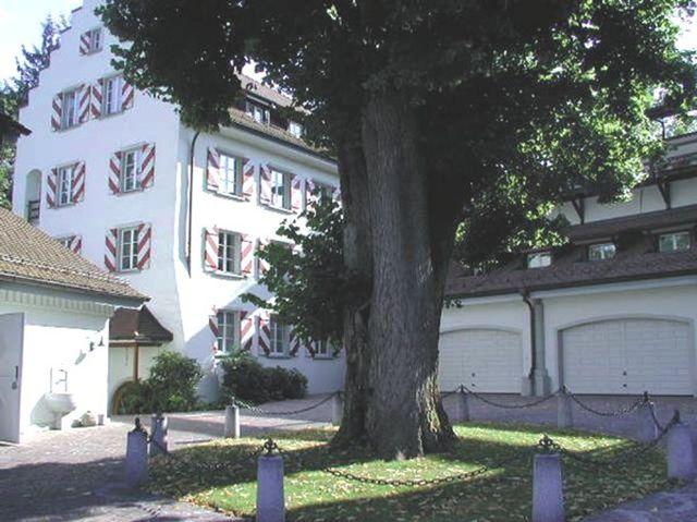 schwarzenbach1